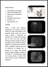 ACIDIA - Video installation